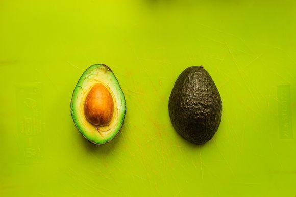 авокадото е опасно за домашните любимци