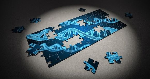 Nucleotides are the building blocks of DNA