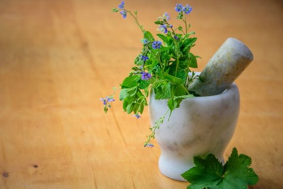 Herbs to relieve symptoms of dyspepsia and indigestion