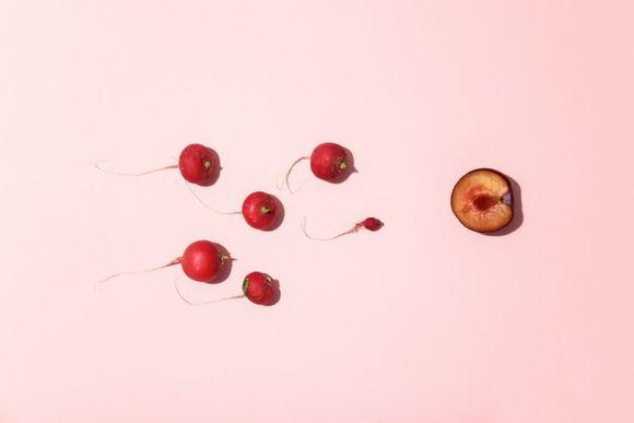 Генното редактиране може да се извърши в репродуктивните клетки сперматозоиди и яйцеклетки