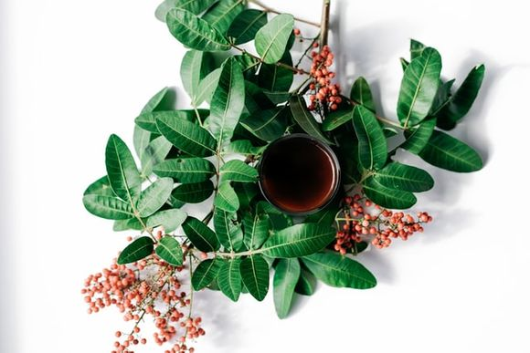 Herbs and plants for nice skin and hair