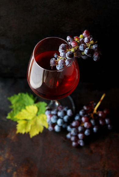 Wine and grapes are a rich source of resveratrol