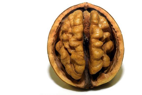 храни, богари на желязо за мозъка