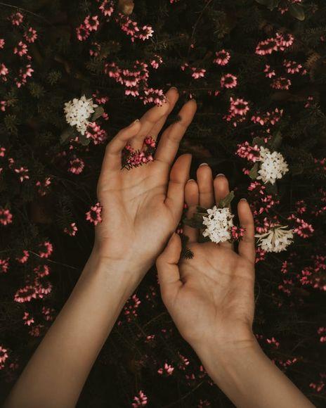 Алое вера, слънчогледово масло за суха кожа на ръцете