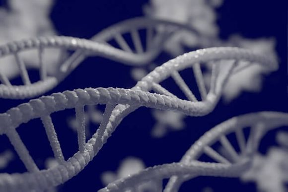 Types of diagnostic genetic tests