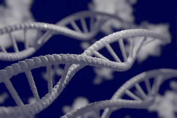 Видове диагностични генетични тестове