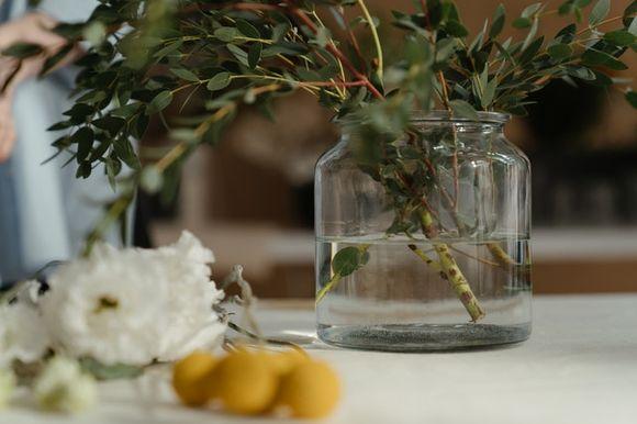 medicinal parts of herbs