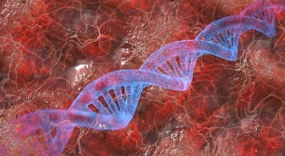 Как се взима проба за генетичен тест