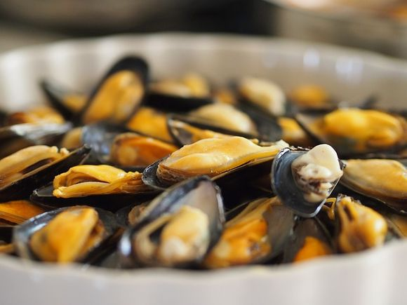mussels are rich in vitamin B12
