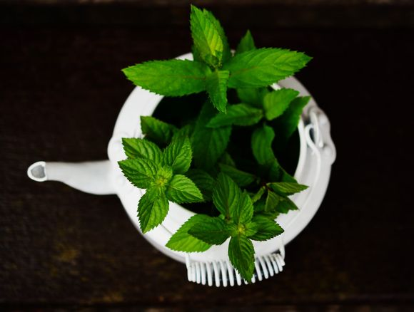 inhalation with mint, rosemary, tea tree, eucalyptus, chamomile