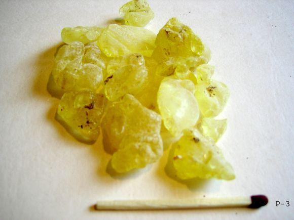 Смолата от Pistacia lentiscus се нарича дъвка мастикс и се използва при лошо храносмилане